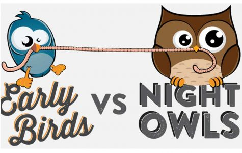 Night Owl vs Early Bird