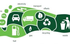 Your Ecological Footprint